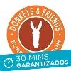Donkeys & Friends Express