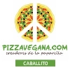 Pizza Vegana Caballito